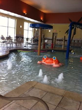 Courtyard Madison West/Middleton : pool