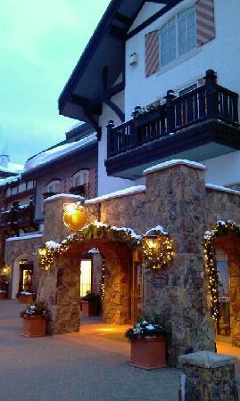Austria Haus Hotel: Entrance