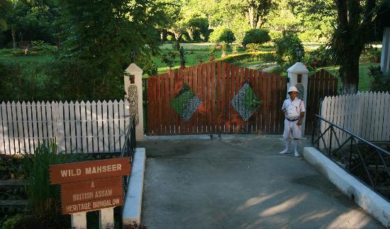 Wild Mahseer: Entrance