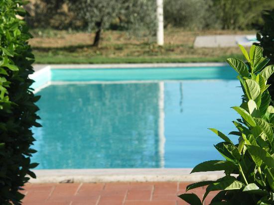 Agriturismo La Fonte: Pool