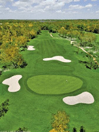 New Smyrna Beach Golf Club Rentals