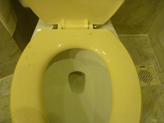 Ramana Hotel Saigon: Toilette