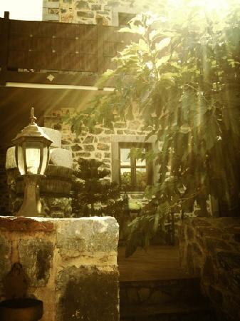 Balsamico Traditional Suites: Garden