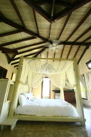 Playa Cielo : Your beautiful kingsized canopy bed