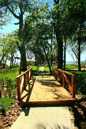 Playa Cielo: Steps to the beach