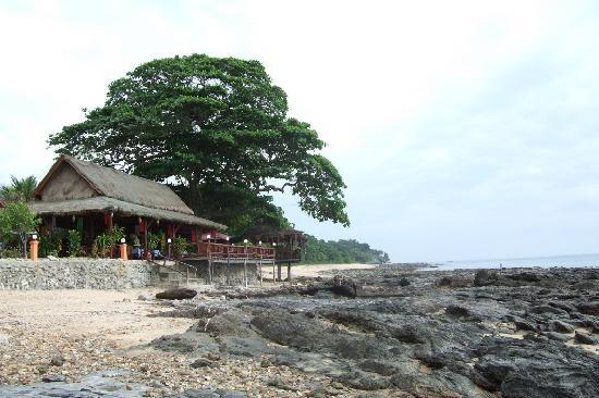 Dream Team Beach Resort: Covered restaurant, the bar is below the tree.