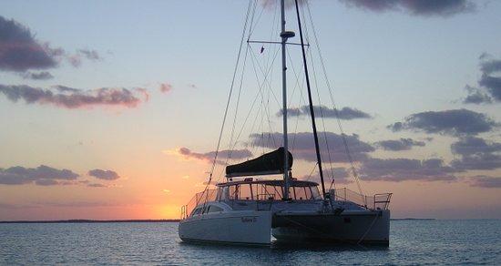 Kathleen D Sailing Catamaran Day Sails: Sunset cruises in Gulf of Mexico, Southwest FL