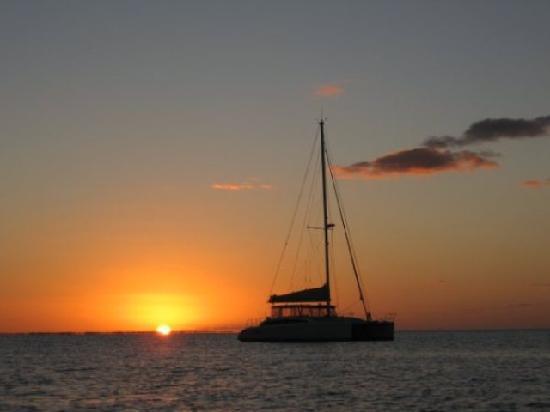 Kathleen D Sailing Catamaran Day Sails: Sunset views of spectacular Gulf sunsets