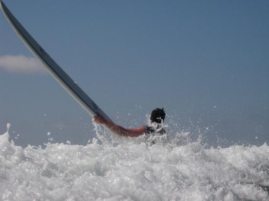 Lucero Surf Retreats: WAVE