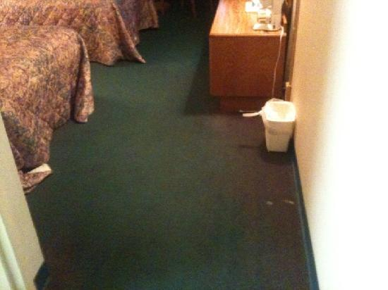 Maggie Valley Inn and Conference Center: nice the discolored carpet and the white stain by the can