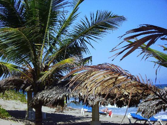 Hotel Celuisma Cabarete: Strand leben