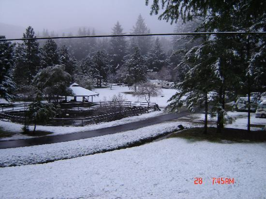 Hiouchi RV Resort: A rare snowy day in the Redwoods