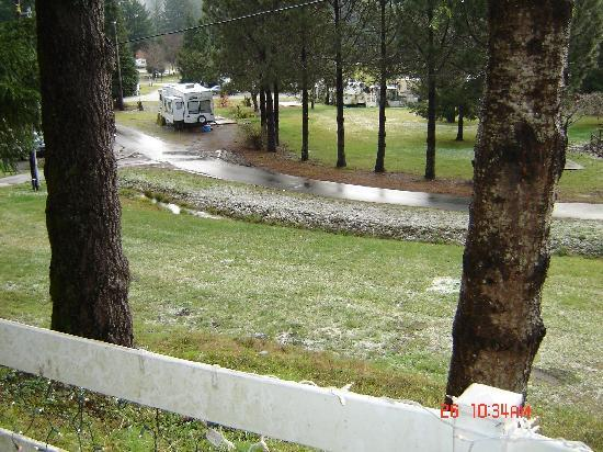 Redwood Meadows RV Resort: Tent area and spacious RV sites