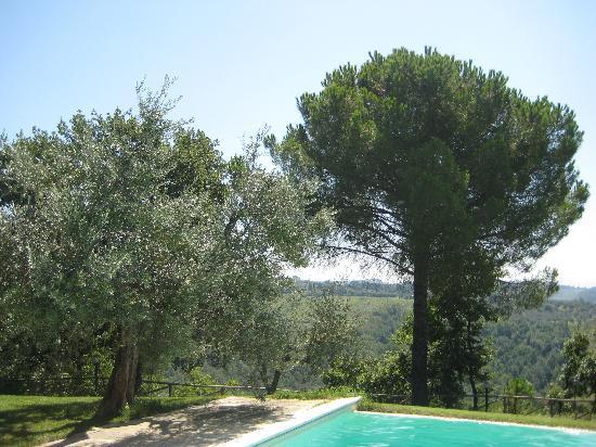 Le Fonti a San Giorgio: Swimming pool at the locanda