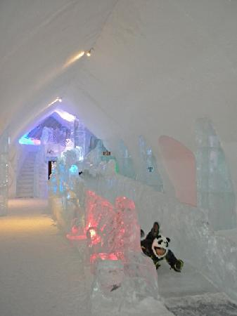 Hotel de Glace: Ice slide in the cafe - fun for all