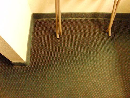BEST WESTERN Hammond Inn & Suites: This patch of discoloration as a result of mold had a real bad smell!