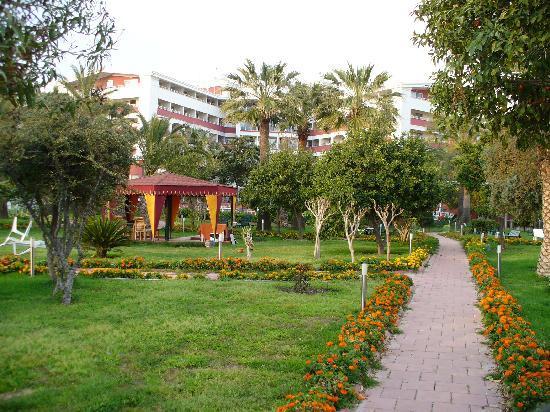 Hotel Athena Lignano Sabbiadoro Bewertung