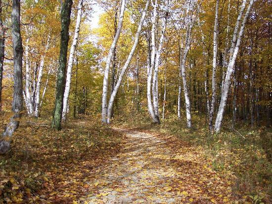 Meadow Ridge Resort: Our nature trails provide great family fun - any season of the year!