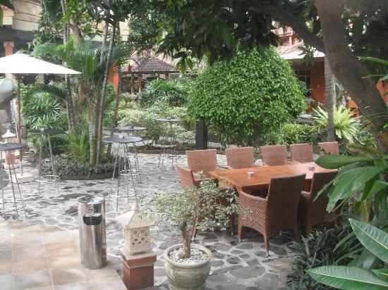 Chonos Hotel: garden with terras