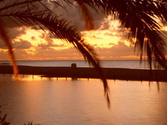 El Capricho Apartamentos: Ansicht des Strandes am Morgen vom Balkon aus