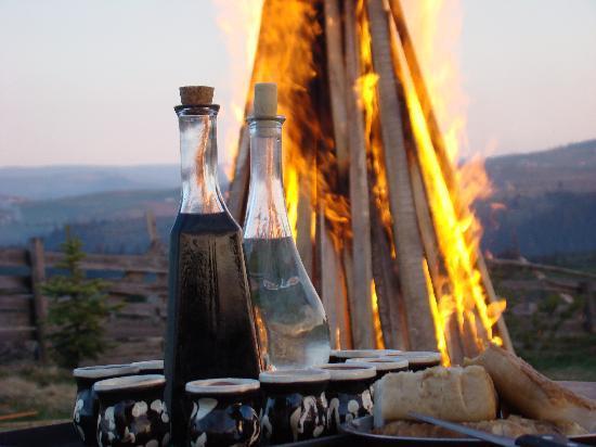 Cabana Motilor: dinner & drinks