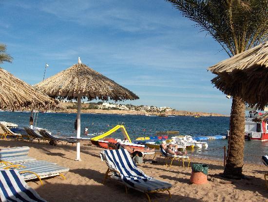 Sharm Dreams Resort: hotels private beach