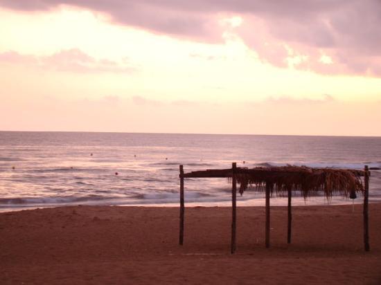 Il Poggio delle Cicale: Beach