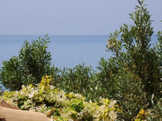 Il Poggio delle Cicale: panoramic view