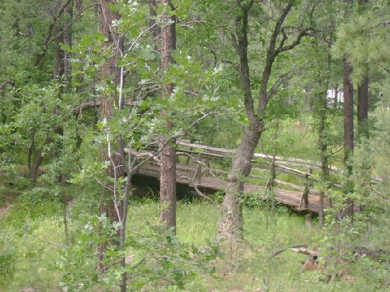 NINE PINES MOTEL: great hiking trail accross from the motel