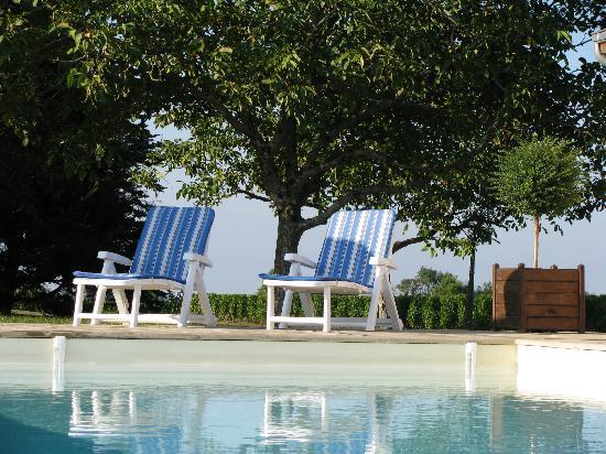 Domaine des Gauliers: La piscine
