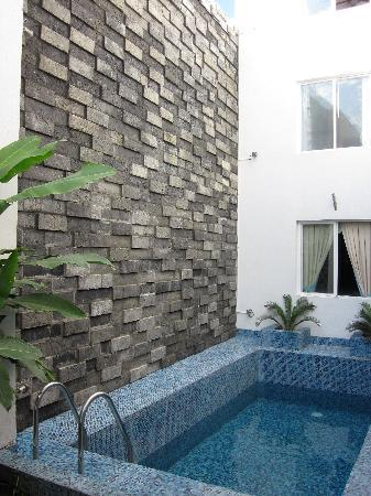 Hotel Eclipse Meridda: Plunge pool