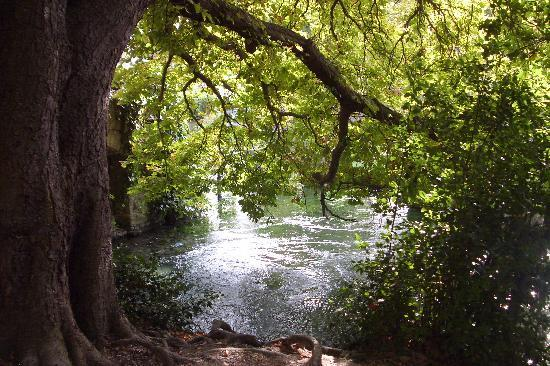L'Isle-sur-la-Sorgue, Francia: fontaine de vaucluse