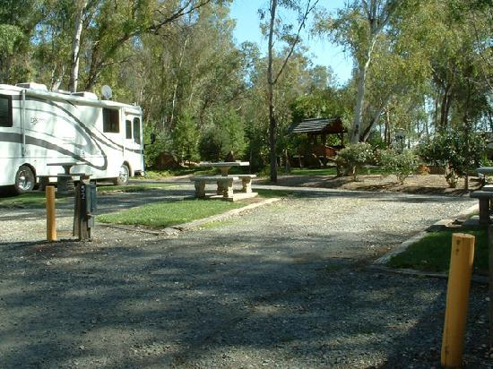 Vineyard Rv Park Vacaville Ca Campground Reviews