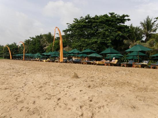 Novotel Bali Benoa: Playa Hotel