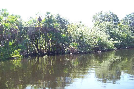 Jaguar Temple Picture Of Belize Cruise Excursions