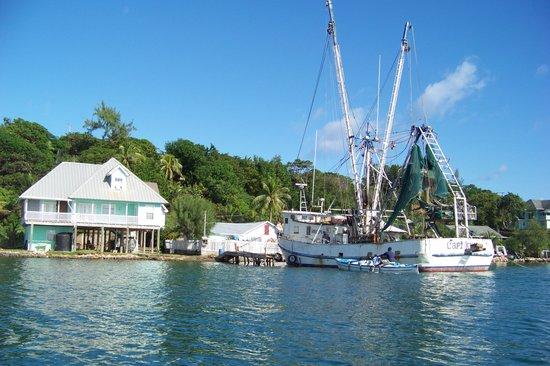 Islander Tours