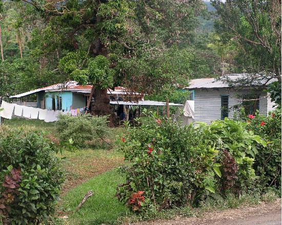 Paradise Taveuni: Some pretty nice houses in the village of Wairiki