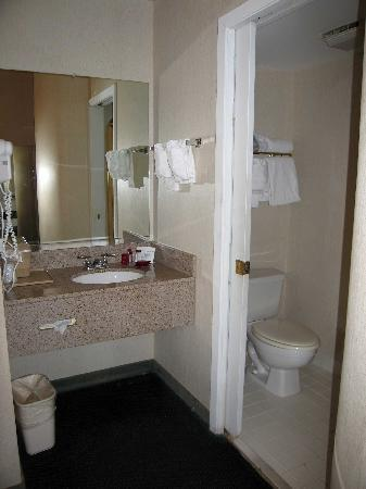 Ramada Marietta/Atlanta North: Room 122 Bathroom area