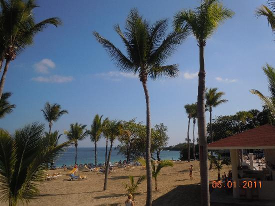 Cofresi Palm Beach & Spa Resort: beach bar and mexican restaurant/snack bar