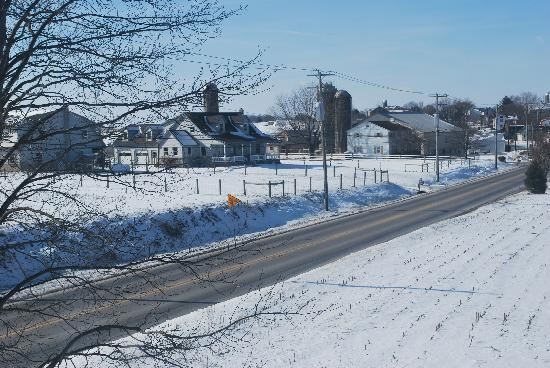 Ben Mar Farm Bed & Breakfast: Amish farm across street