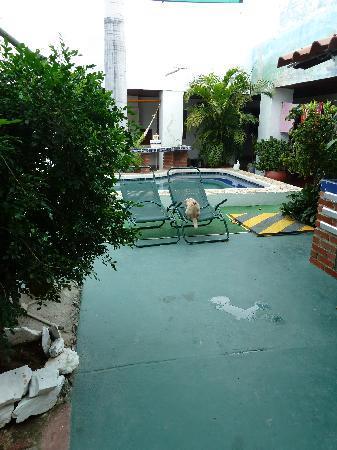 Hotel Nueva Granada : piscine
