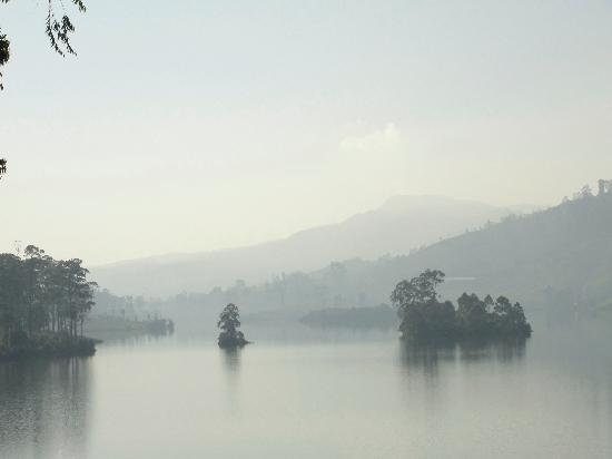 Ceylon Tea Trails: View from Summerville