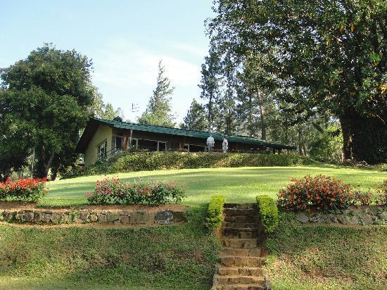 Ceylon Tea Trails: Summerview (back view)