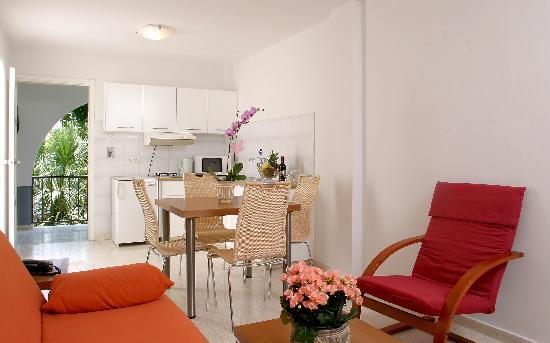Alkionest Hotel Apartments: studio-kitchen