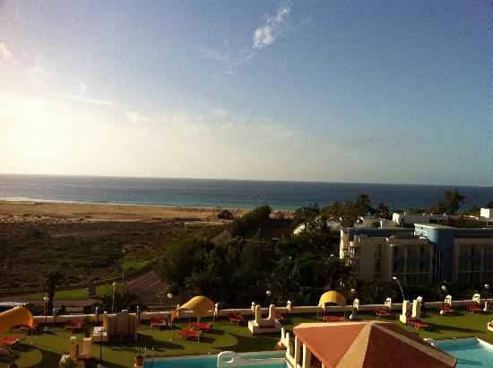 palm garden hotel reviews fuerteventura playa de jandia tripadvisor. Black Bedroom Furniture Sets. Home Design Ideas