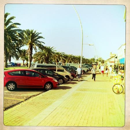 Palm Garden Hotel: Promenaden.