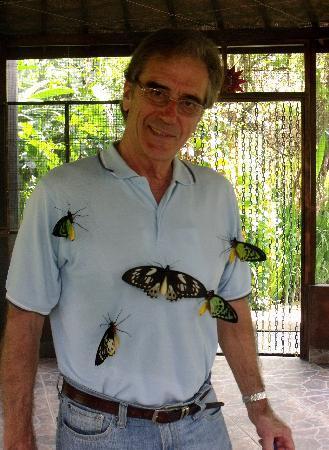 Tabanan, Indonesia: papillons nés depuis une heure