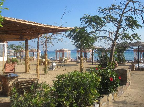 shared hotel beach