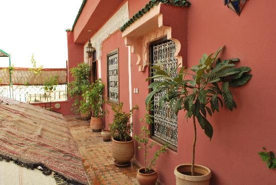 Riad Idrissi : terrazzo