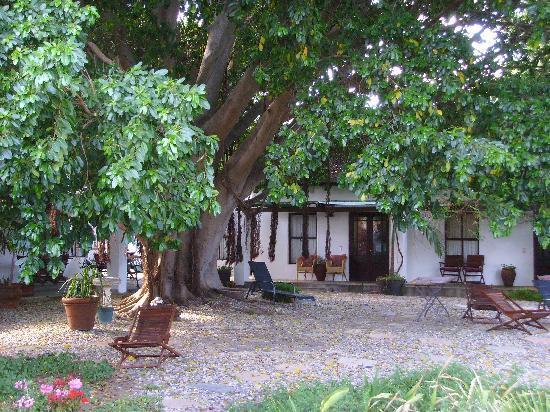 Saint du Barrys: Der *Garten*